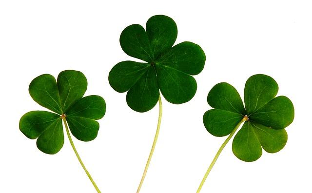 Saint Patrick's Day (1)